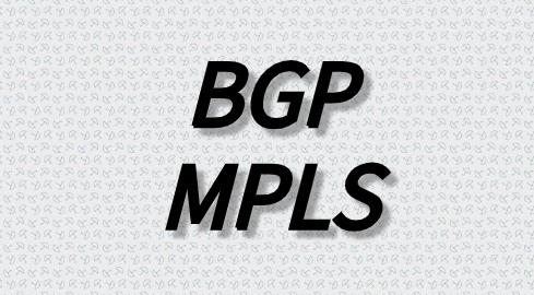 mpls只能在bgp上使用吗?