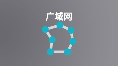 如何选择WAN广域网服务?