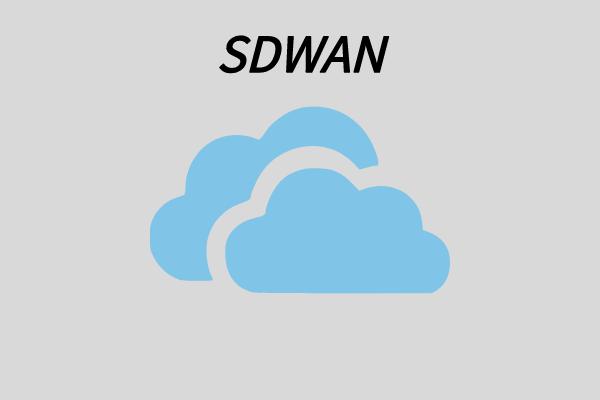 国内sdwan初创公司的sdwan方案是怎样的?