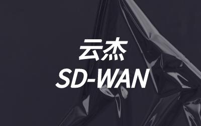 什么是WAN?什么是SD-WAN?