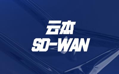如何组建sdwan网络?
