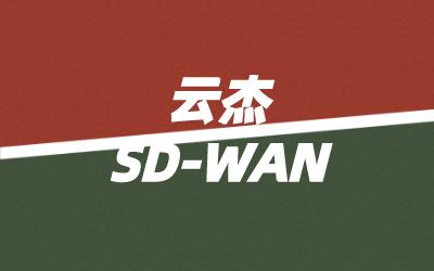 sdwan漏洞有哪些?