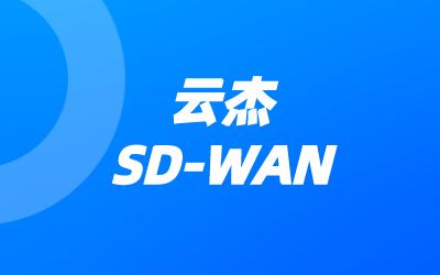 sdwan是什么技术?