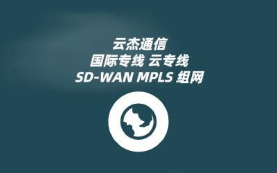 sdwan可以提供哪些服务?