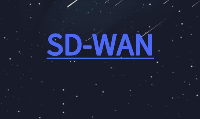 SD-WAN是一個強大而獨立的解決方案