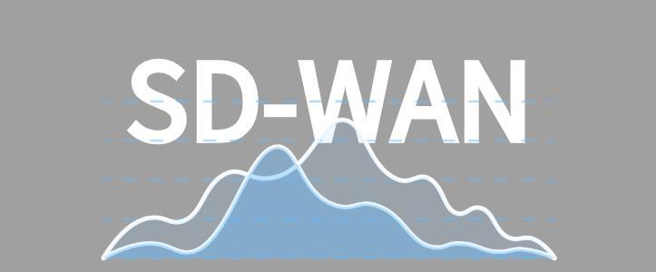 業內紛紛看好的SD-WAN有何優勢?