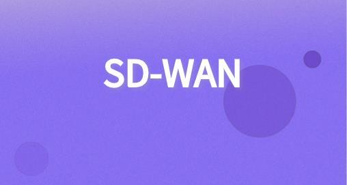 SD-WAN部署方案