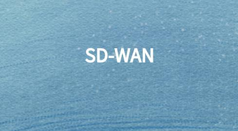 sdwan国际品牌