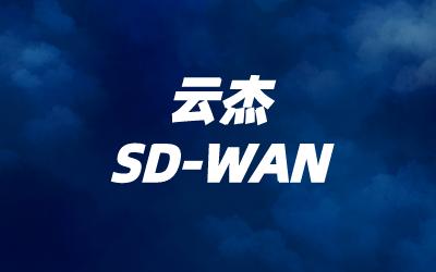 云杰sdwan互联组网