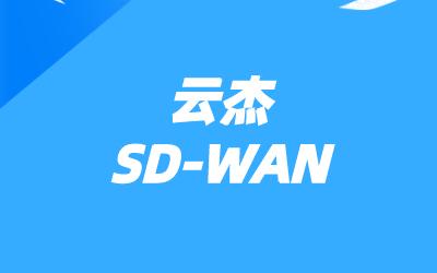 大地云网sdwan服务