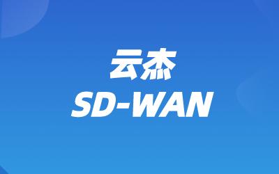 SD-WAN分支解决方案