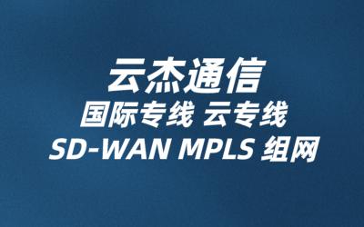 国内外sdwan多分支组网方案