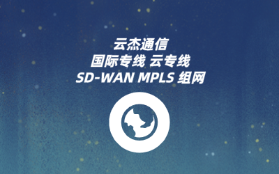 SDWAN分支国际网络访问解决方案