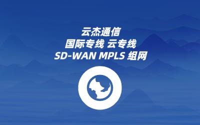 跨境网络传输SDWAN解决方案
