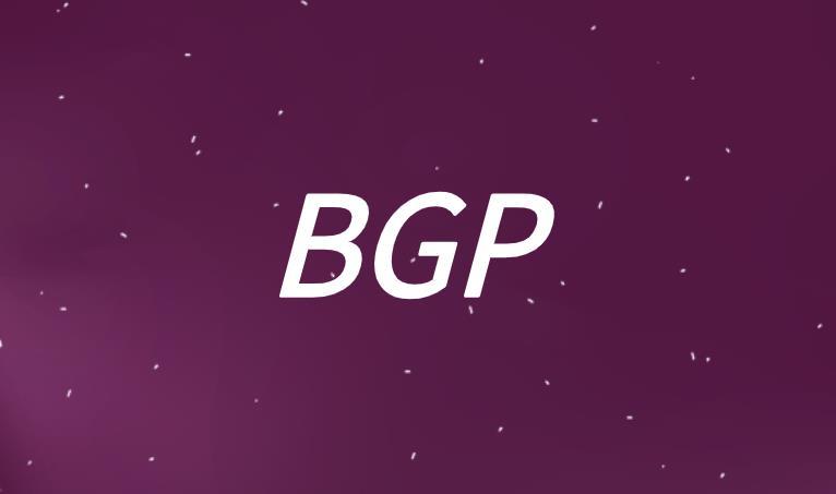 BGP可见性是真的吗?