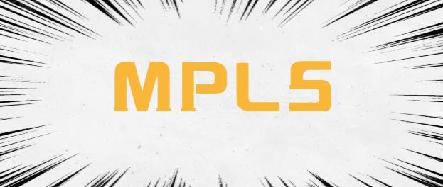 MPLS技术中的常见术语解释