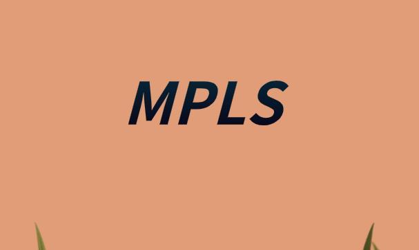 MPLS技术原理分析
