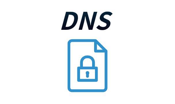 保护DNS对数字网络安全越来越重要