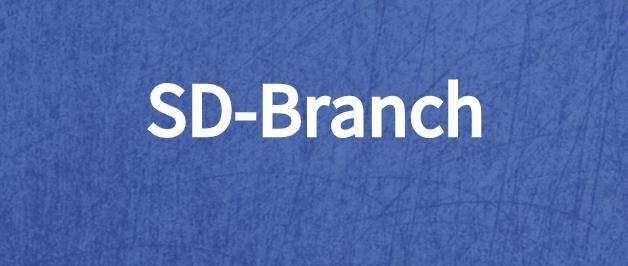 管理SD-Branch安全性的5条基本原则