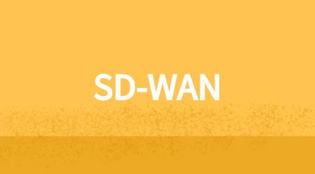 企业组网,MPLS,SD-WAN,专线