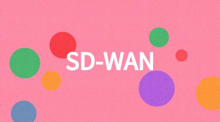 集團分支機構采用SD-WAN的理由