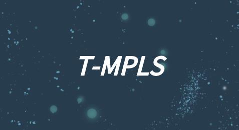 T-MPLS的技術特性