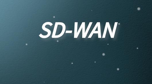 SD-WAN廣域網技術功能特點