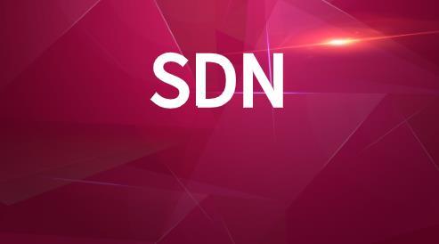 SDN在网络层中的抽象类型