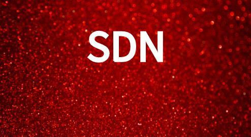 SDN网络的可编程