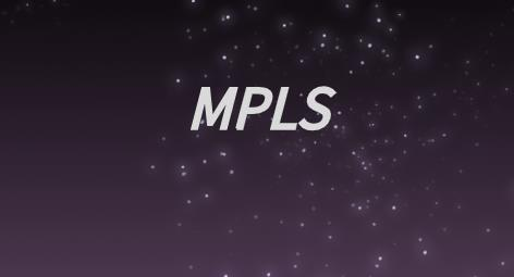 MPLS标签结构