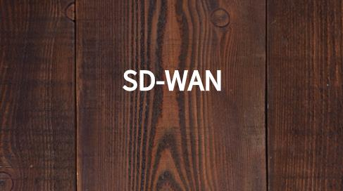 sdwan技术架构