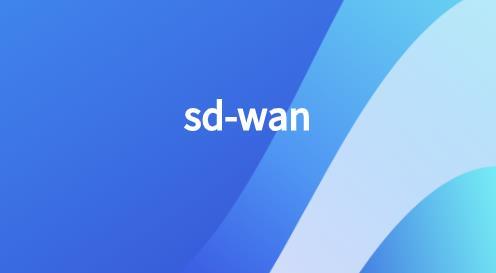 SDWAN解决方案厂商