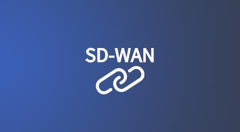 sdwan 国际互联网加速