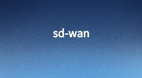sdwan视频优化