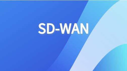 sdwan组播应用