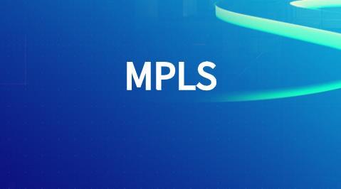 MPLS路由器结构