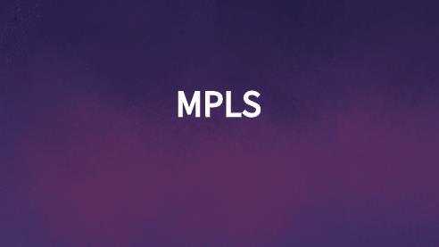mpls 路由器