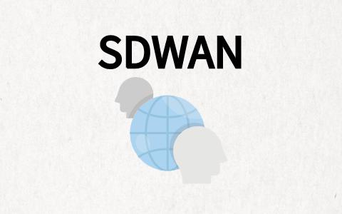 sdwan网关优势