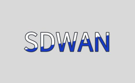 sdwan企业