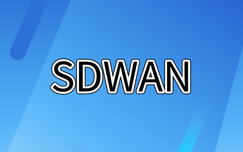 sdwan安全公司