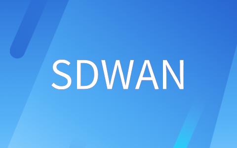 sdwan基础知识