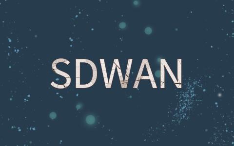 连锁SD-WAN组网方案说明