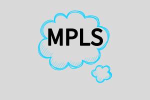 简述MPLS如何支持多协议