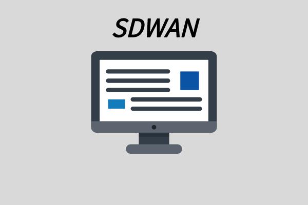 自建sdwan服务器