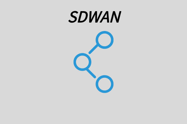 SDWAN和广域网加速在企业广域网建设中的应用