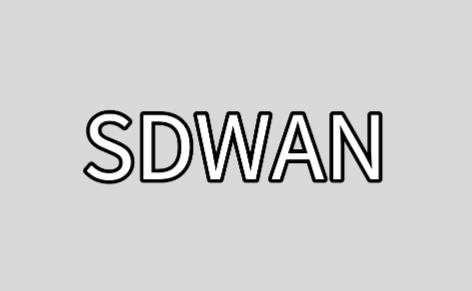 SD-WAN云服务基础架构