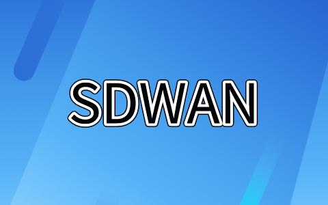 sdwan异地组网