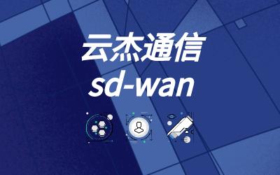 SD-WAN 接口的链路监视器要求