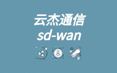sdwan企业组网