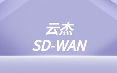 与其他专线的sdwan功能对比